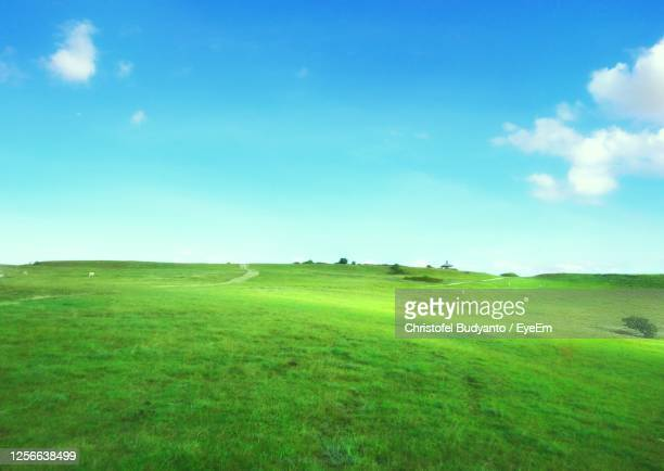scenic view of landscape against sky - 台地 ストックフォトと画像