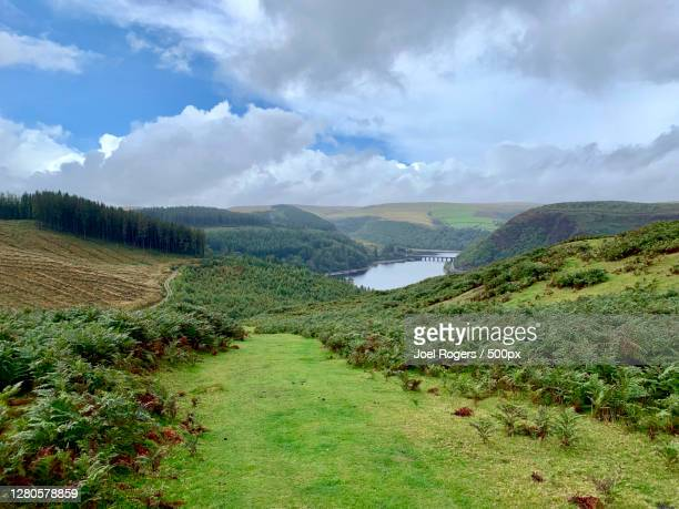 scenic view of landscape against sky - joel rogers stock pictures, royalty-free photos & images