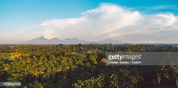 scenic view of landscape against sky - bortes stock pictures, royalty-free photos & images
