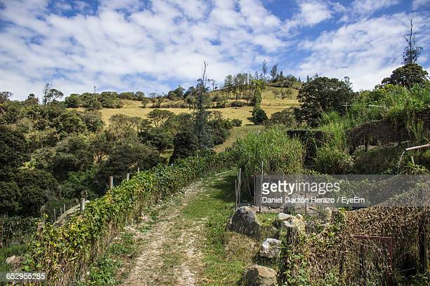 scenic view of landscape against sky - cundinamarca stock pictures, royalty-free photos & images