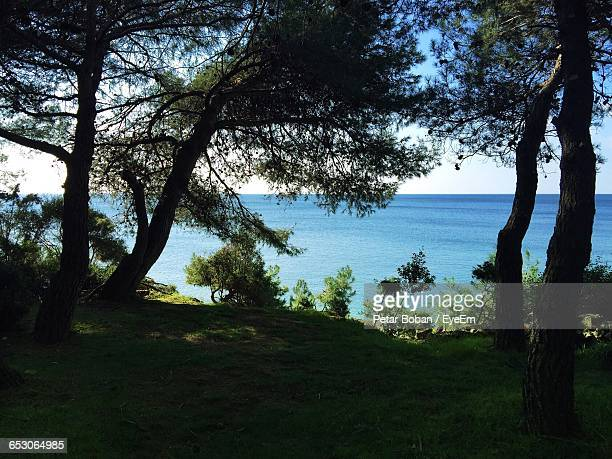 scenic view of landscape against sky - boban stock pictures, royalty-free photos & images