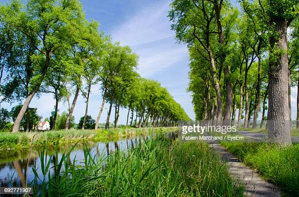 scenic view of landscape against sky - damme stock pictures, royalty-free photos & images