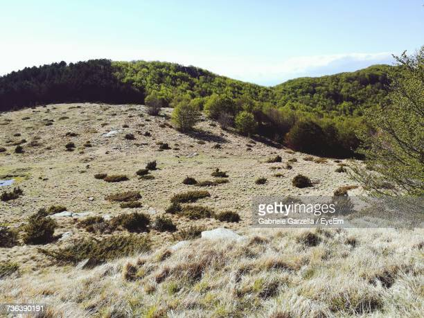 scenic view of landscape against sky - massa stock pictures, royalty-free photos & images