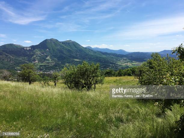 scenic view of landscape against sky - alpes de haute provence stock pictures, royalty-free photos & images