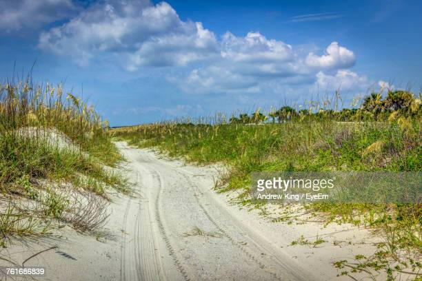 scenic view of landscape against sky - hilton head stock pictures, royalty-free photos & images