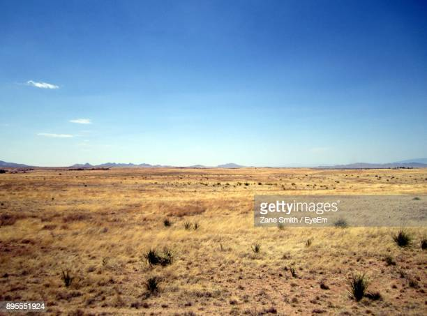 scenic view of landscape against sky - prairie stock pictures, royalty-free photos & images
