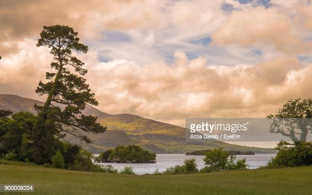 scenic view of landscape against sky - county cork stock pictures, royalty-free photos & images