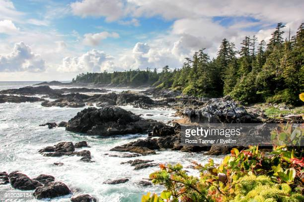 scenic view of landscape against sky - vancouver island stockfoto's en -beelden