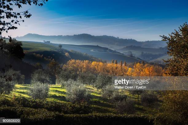 scenic view of landscape against sky - walter ciceri foto e immagini stock