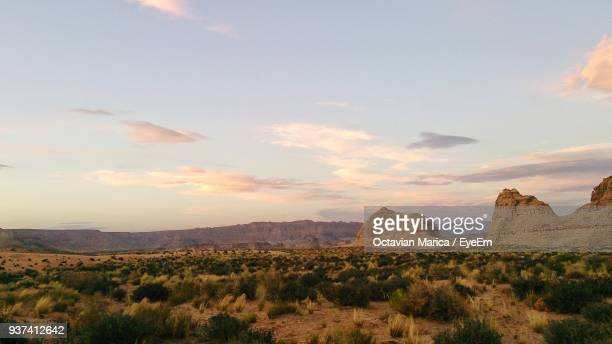 scenic view of landscape against sky - marica octavian stock photos and pictures