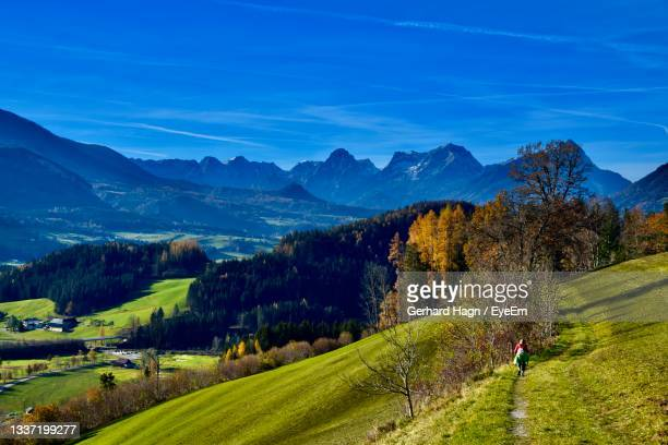 scenic view of landscape and mountains against blue sky in autumn - gerhard hagn stock-fotos und bilder