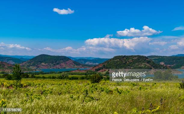 scenic view of landscape and mountains against blue sky - pezenas stock photos and pictures