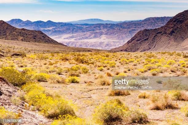 scenic view of landscape and mountains against sky - great basin stock pictures, royalty-free photos & images