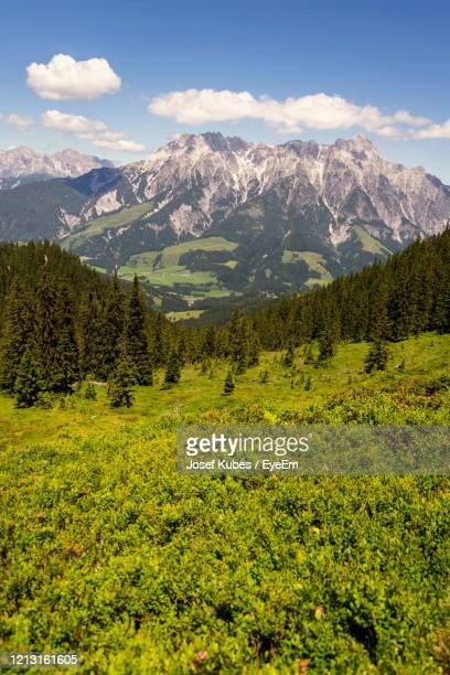 scenic view of landscape and mountains against sky - leogang stock pictures, royalty-free photos & images