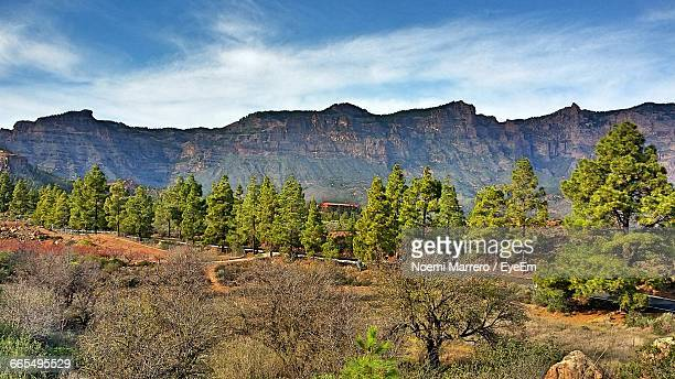 scenic view of landscape and mountains against sky - noemi foto e immagini stock
