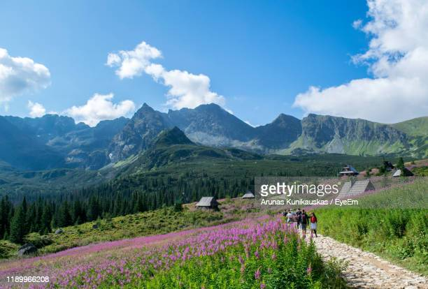 scenic view of landscape and mountains with people on footpath against sky - zakopane stock pictures, royalty-free photos & images