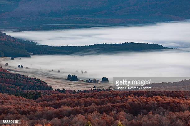 Scenic View Of Landscape Covered In Fog At Cansiglio