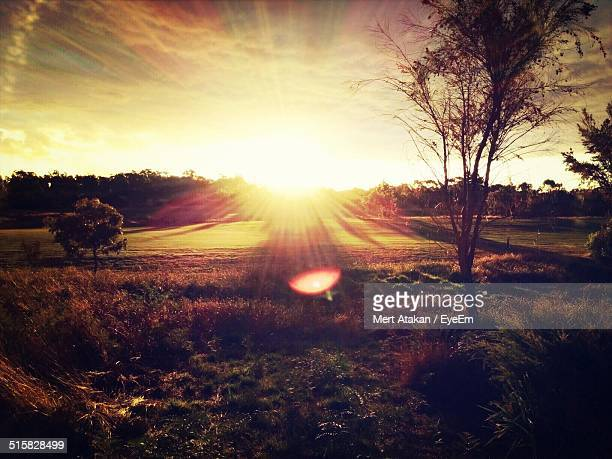 Scenic View Of Landscape In Sunny Day