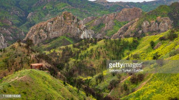 scenic view of landscape - solomon turkel stock pictures, royalty-free photos & images