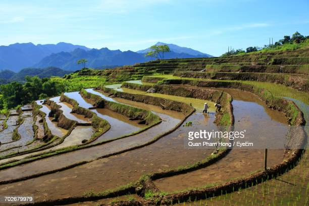 scenic view of landscape - hong quan stock pictures, royalty-free photos & images