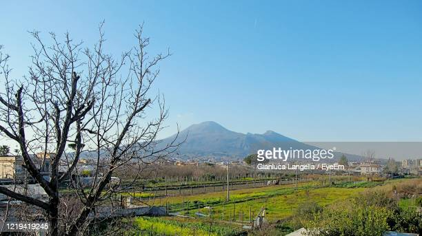 scenic view of landscape whit vesuvio against clear blue sky - gianluca langella imagens e fotografias de stock