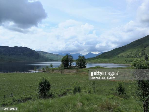 scenic view of loch arklet in the trossachs national park - lucinda lee stock pictures, royalty-free photos & images