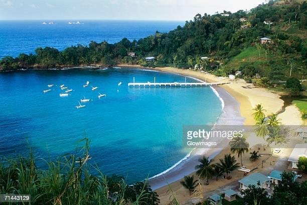 Scenic view of Man O' War Bay, Tobago, Caribbean