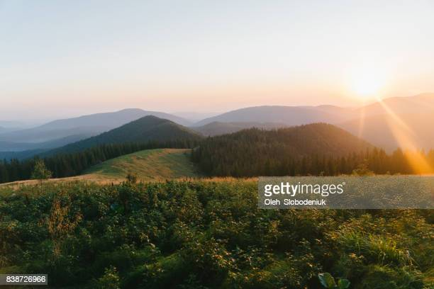 Scenic view of  meadow and mountains at dawn