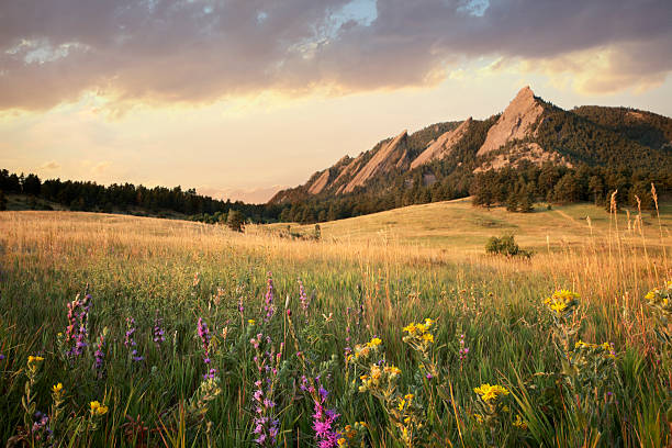 Scenic view of meadow and mountains, Boulder, Colorado, USA