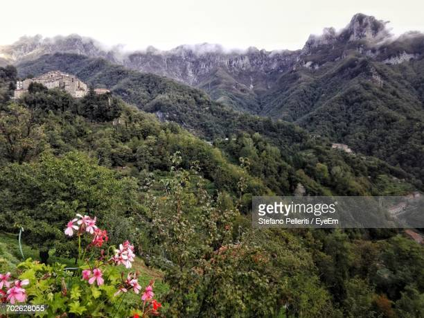 scenic view of mountain range - massa stock pictures, royalty-free photos & images