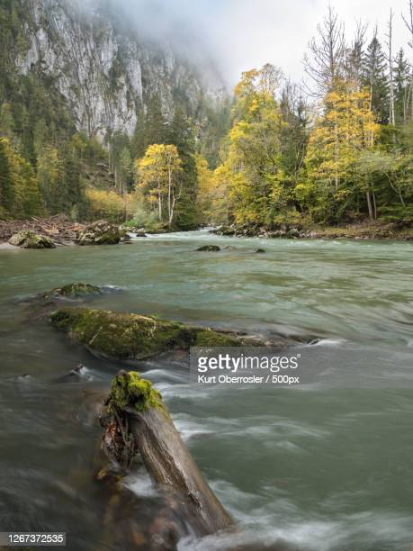 scenic view of mountain river - wasser stock pictures, royalty-free photos & images