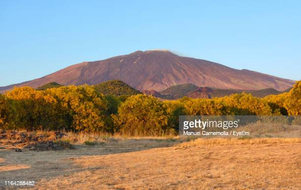 scenic view of mountains against clear blue sky - etna foto e immagini stock