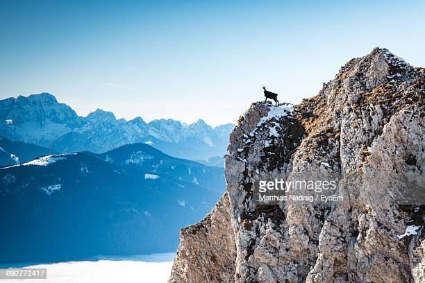 scenic view of mountains against clear blue sky - carinthia stock pictures, royalty-free photos & images
