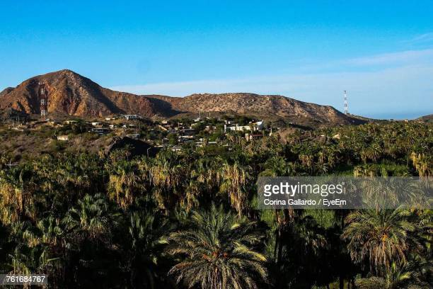 scenic view of mountains against clear blue sky - tijuana stock pictures, royalty-free photos & images
