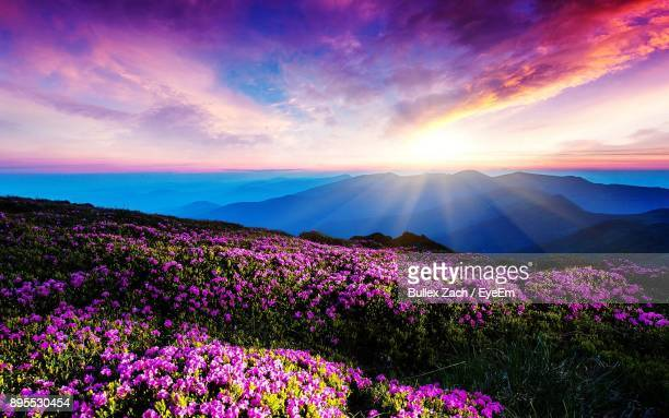 scenic view of mountains against sky during sunset - idyllic stock pictures, royalty-free photos & images
