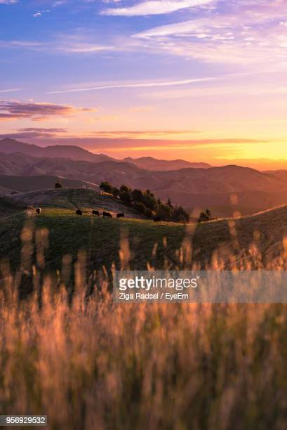 scenic view of mountains against sky during sunset - marlborough new zealand stock pictures, royalty-free photos & images