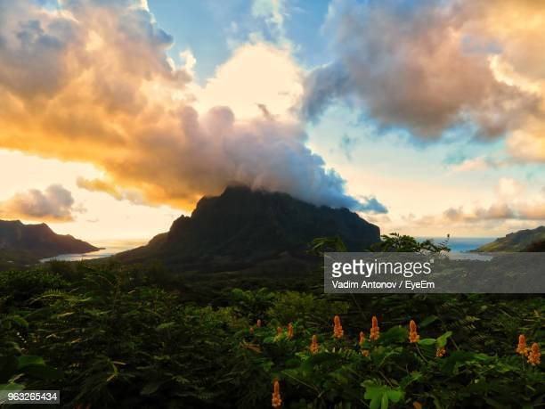 scenic view of mountains against sky during sunset - tahiti stock pictures, royalty-free photos & images