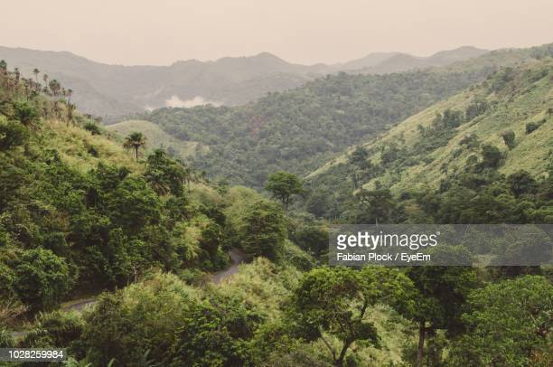scenic view of mountains against sky - cameroun photos et images de collection