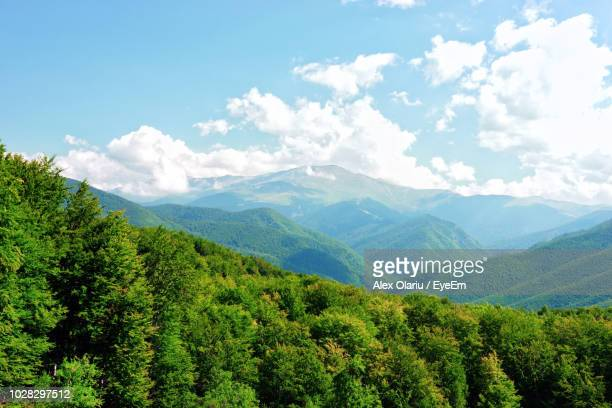 scenic view of mountains against sky - alex olariu stock photos and pictures