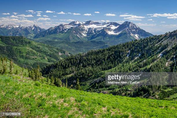 scenic view of mountains against sky - lehi foto e immagini stock