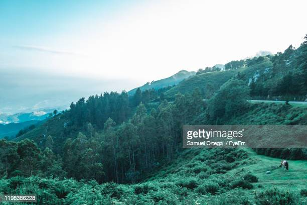 scenic view of mountains against sky - incidental people stock pictures, royalty-free photos & images