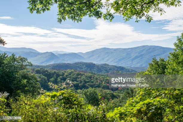 scenic view of mountains against sky - tennessee stock pictures, royalty-free photos & images