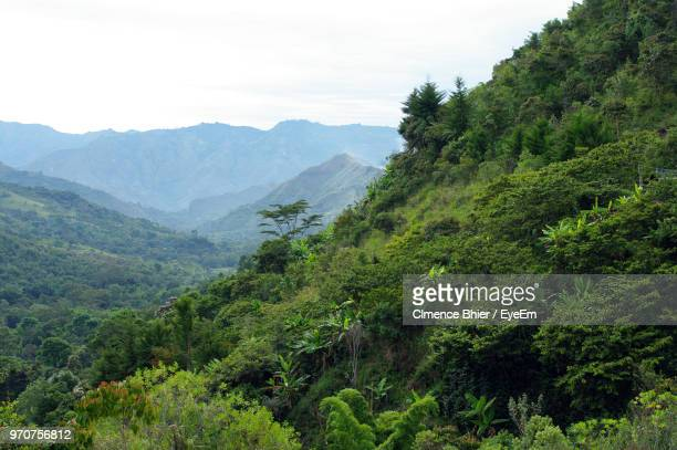 scenic view of mountains against sky - colombia stock pictures, royalty-free photos & images