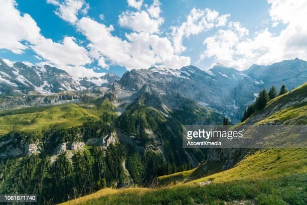 malerische aussicht auf berge und wald, tiefes tal - gebirge stock-fotos und bilder