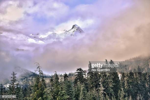 scenic view of mountains in mist, whistler, british columbia, canada - whistler british columbia stock pictures, royalty-free photos & images