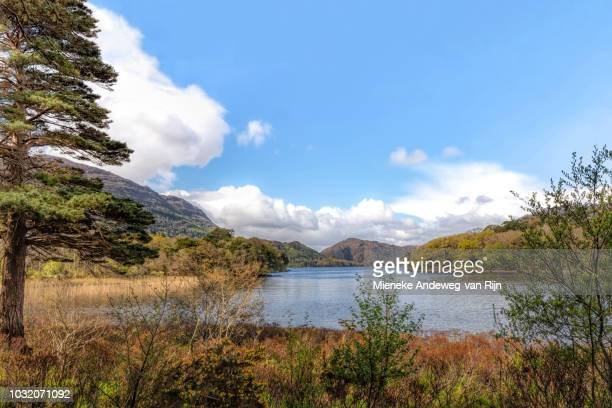 Scenic view of Muckross Lake, Killarney, Ireland