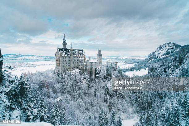 scenic view of  neuschwanstein castle in germany - chateau stock pictures, royalty-free photos & images