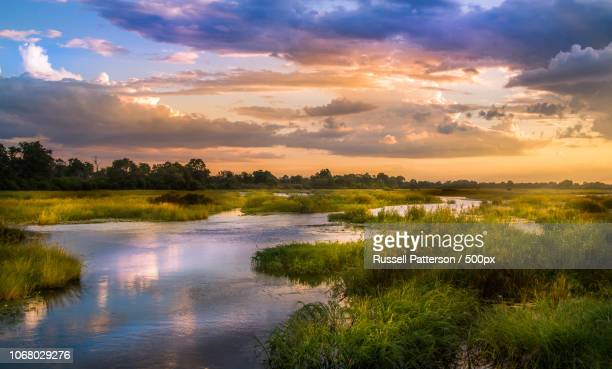 scenic view of okavango river at sunset - botswana stock pictures, royalty-free photos & images