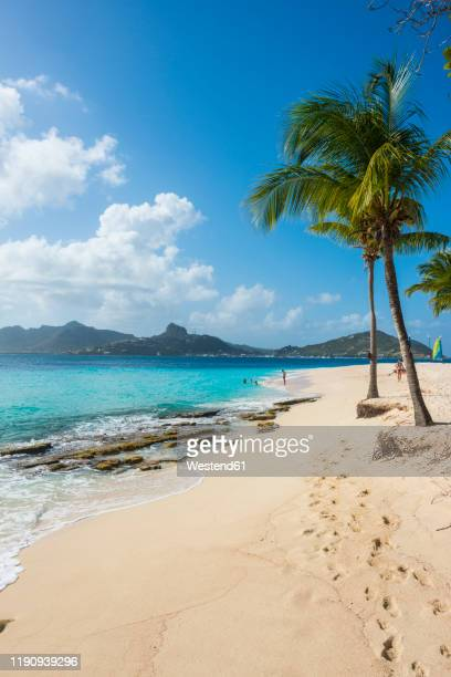 scenic view of palm fringed white sand beach on palm island with union island in background, grenadines islands, st. vincent and the grenadines, caribbean - saint vincent et les grenadines photos et images de collection