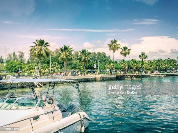 Scenic View Of Palm Trees By Sea Against Sky